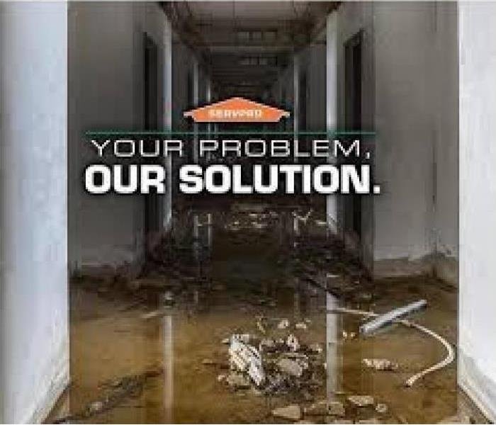 Water Damage The Dangers of Not Immediately Dealing with Water Damage