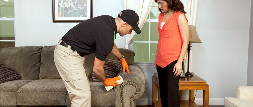 Bainbridge, IN carpet upholstery cleaning
